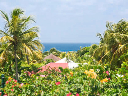 Villa piscine priv e beau jardin tropical fruitier for Au jardin tropical guadeloupe